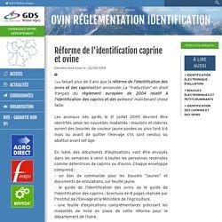 GRDSRA 22/05/19 Réforme de l'identification caprine et ovine