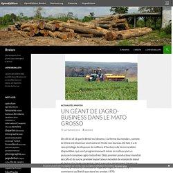 Un géant de l'agro-business dans le Mato Grosso