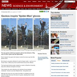 Geckos inspire 'Spider-Man' gloves