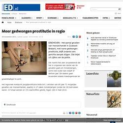 Meer gedwongen prostitutie in regio