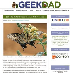 10 Geeky Butterfly Facts to Share With Your Kids - GeekDad
