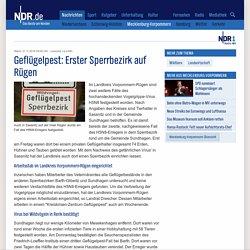 NRD 21/11/16 Geflügelpest: Erster Sperrbezirk auf Rügen