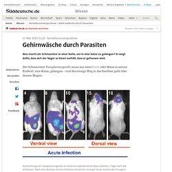 Verhaltensmanipulation - Gehirnwäsche durch Parasiten