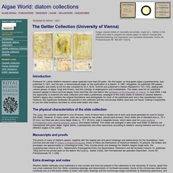 Algae World: The Geitler Collection of diatoms in the University of Vienna