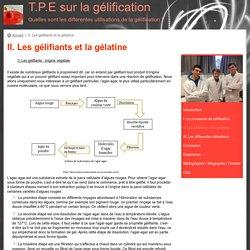 II. Les gélifiants et la gélatine - T.P.E sur la gélification