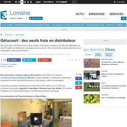 FRANCE 3 LORRAINE 08/04/15 Gélucourt : des oeufs frais en distributeur