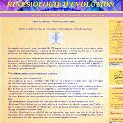 Gémellité utérine / Syndrôme du jumeau perdu - KINESIOLOGIE D'EVOLUTION