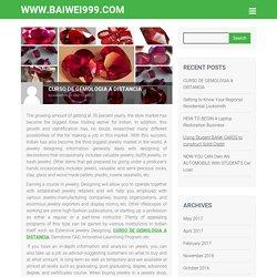CURSO DE GEMOLOGIA A DISTANCIA – www.baiwei999.com