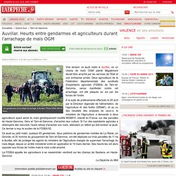 Auvillar. Heurts entre gendarmes et agriculteurs durant l'arrachage de maïs OGM - 05/06/2014