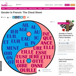 Gender in French: The Cheat Sheet - French learning article