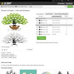 Arbre Généalogique Clip Art Libres De Droits , Vecteurs Et Illustration. Image 12038206.
