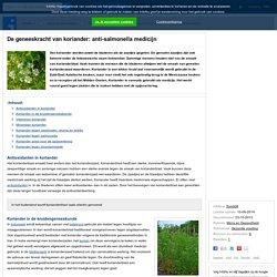 De geneeskracht van koriander: anti-salmonella medicijn
