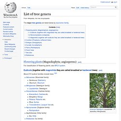 List of tree genera