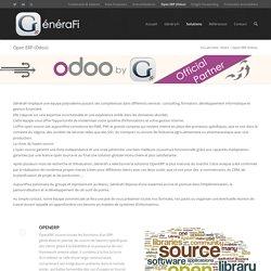 Open ERP (Odoo)