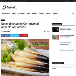 General notes on Commercial Aspects of Bamboo