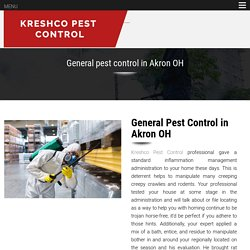 General pest control in Akron OH