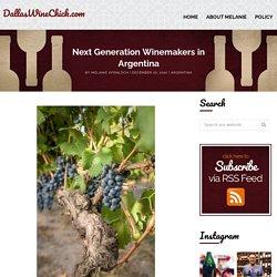 Next Generation Winemakers in Argentina - DallasWineChick.com