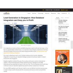 Lead Generation in Singapore: How Database Integration can Keep you in Profit