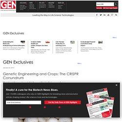 GEN 03/01/17 Genetic Engineering and Crops: The CRISPR Conundrum