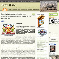 Genetically engineered maize with synthetic toxin approved for usage in EU food and feed