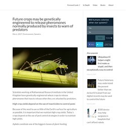 FORWARDLOOK 06/03/17 Future crops may be genetically engineered to release pheromones normally produced by insects to warn of predators