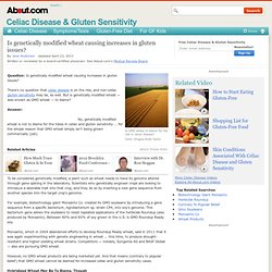 CELIAC DISEASE ABOUT 13/04/13 Is genetically modified wheat causing increases in gluten issues?
