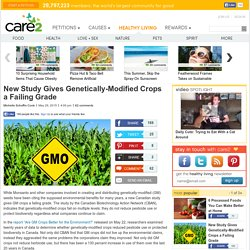 Study Gives Genetically-Modified Crops a Failing Grade
