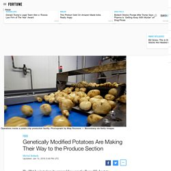 FORTUNE 14/01/16 Genetically Modified Potatoes Are Making Their Way to the Produce Section