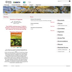 IUFRO 2012 Genetics of Fagaceae and Nothofagaceae - home page