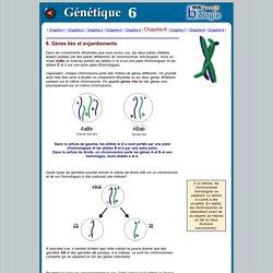 Genétique-6