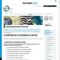 La génétique de la tolérance au lactose et la sélection naturelle — Site des ressources d'ACCES pour enseigner la Science de la Vie et de la Terre