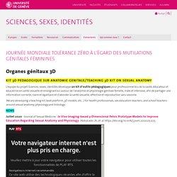 Organes génitaux 3D - Sciences, Sexes, Identités