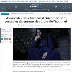 «Génocide» des chrétiens d'Orient : où sont passés les défenseurs des droits de l'homme?