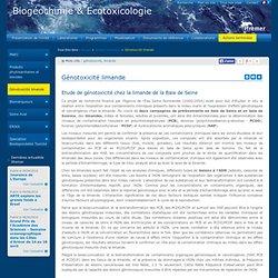 IFREMER 27/01/11 Etude de génotoxicité chez la limande de la Baie de Seine