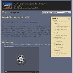 Site du CDI des lycées Lislet Geoffroy et Leconte de Lisle - île de la Réunion : La réhabilitation