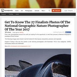 Nature Photographer 2017