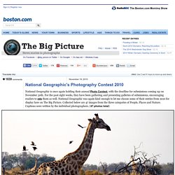 NatGeo Photo Contest