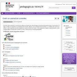Enseigner : Histoire Géographie Ed Civique lycée - Créer un cabinet de curiosités