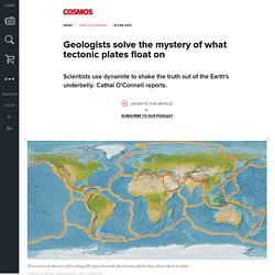Geologists solve the mystery of what tectonic plates float on