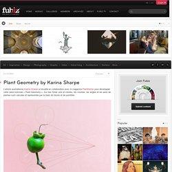 Plant Geometry by Karina Sharpe