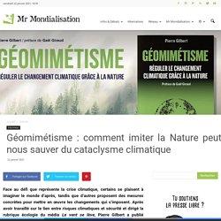 Géomimétisme : comment imiter la Nature peut nous sauver du cataclysme climatique