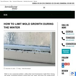 Limit Mold Growth During Winter in Georgia