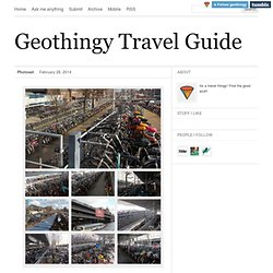 Geothingy Travel Services