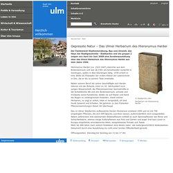 Stadt Ulm - Gepresste Natur – Das Ulmer Herbarium des Hieronymus Harder