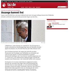 Gericht in London hat entschieden: Assange kommt frei
