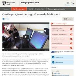 Gerillaprogrammering på svenskalektionen