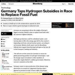 Germany Taps Hydrogen Subsidies in Race to Replace Fossil Fuel