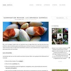 Germination maison: Les amandes germées - 56k idées