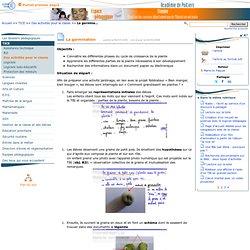 La germination - Pédagogie inspection académique 86