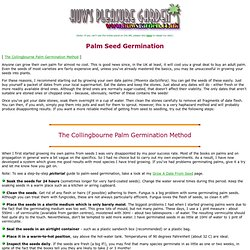 Germination of Palms